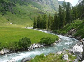Water and greenery in the Passeiertal