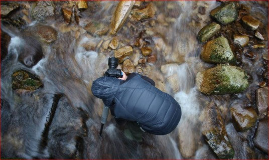 A photographer in a creek