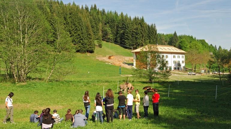 Eco holidays in Trentino