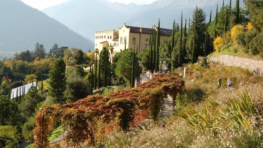 Foliage in The gardens of Trauttmansdorff Castle, South Tyrol
