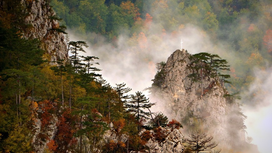 Foliage in Serbia