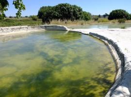 The beautiful baths of Bullicame, Viterbo