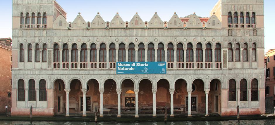 Museo storia Naturale in Venice