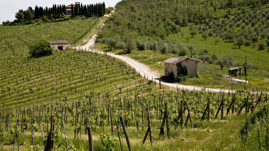 Country holidays in Tuscany