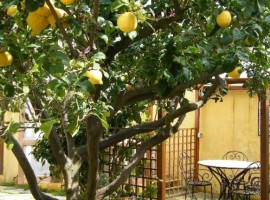 Low-cost holiday in Sardinia