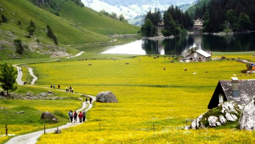 In the train towards Appenzell, Switzerland