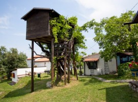 Tree house of Aperegina farmhouse