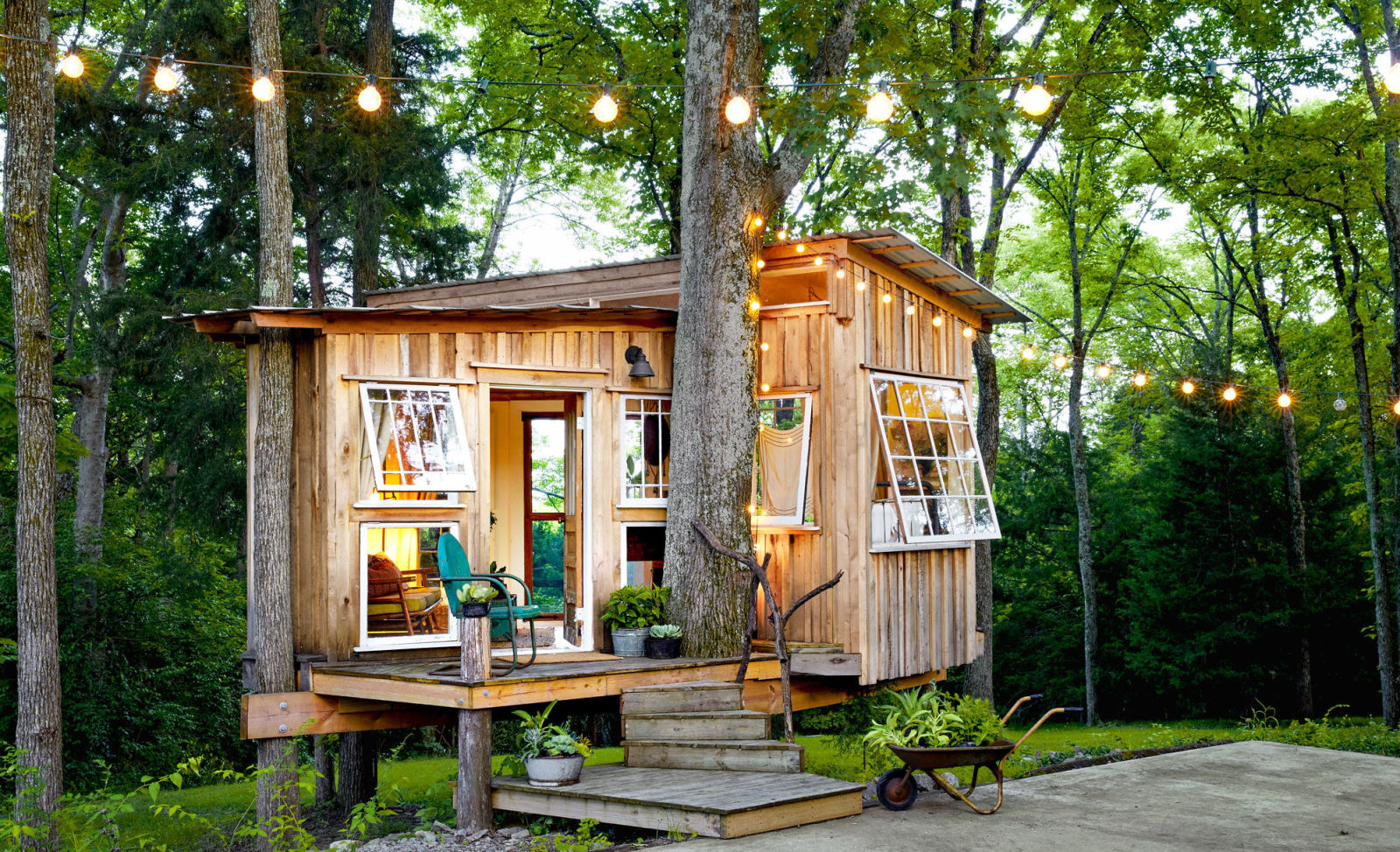 tiny house among greenery