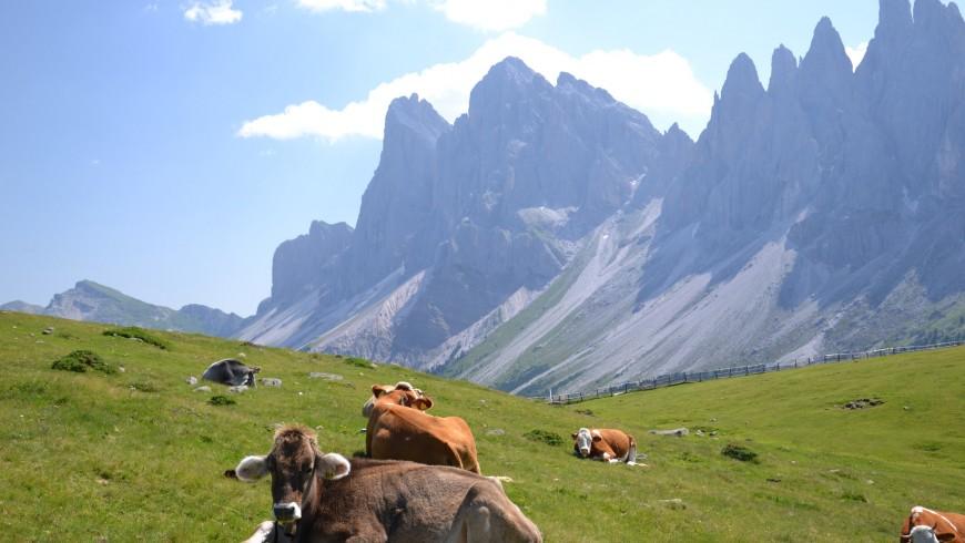 Val di Funes, South Tyrol