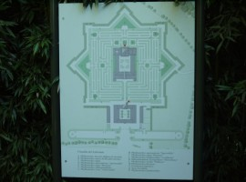 The plant star-shaped maze