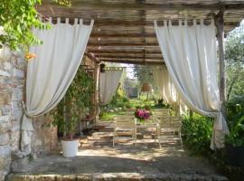 Organic Farm in Camaiore