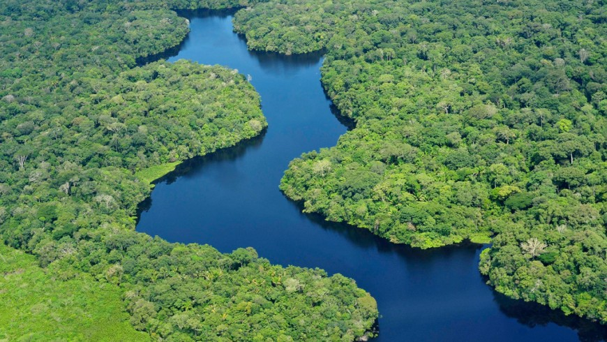 Amazon, one of the places that may disappear because of climate change