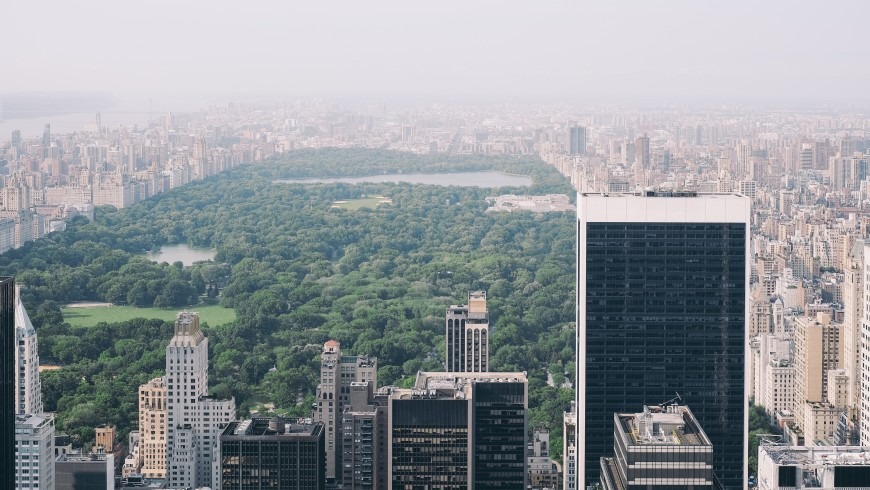 New York, one of the places that may disappear because of climate change