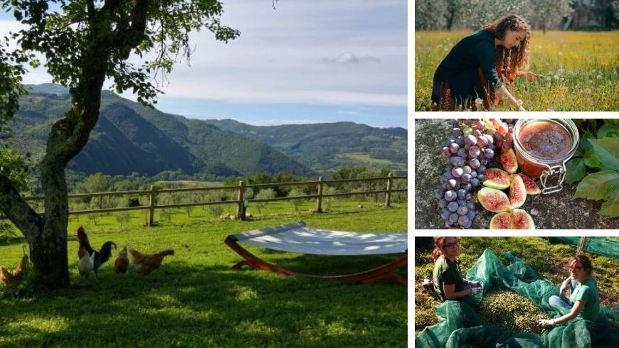 Rural Experience in La Fontaccia, one of the best organic farms in Tuscany