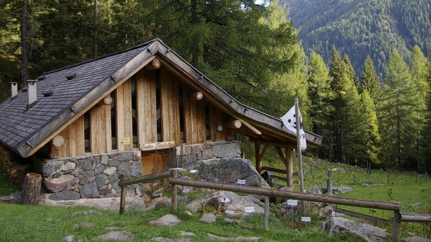 Valtrigona WWF Oasis, Trentino