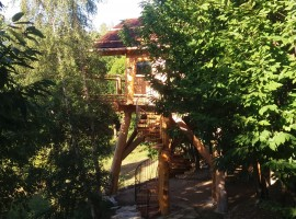 one of the two tree houses surrounded by trees in Piedmont, Italy