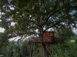 Tree house La Prugnola, in Tuscany