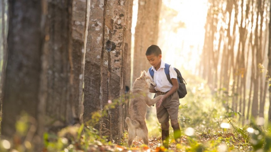 Thanks to dogs, children become more sensitive and responsible