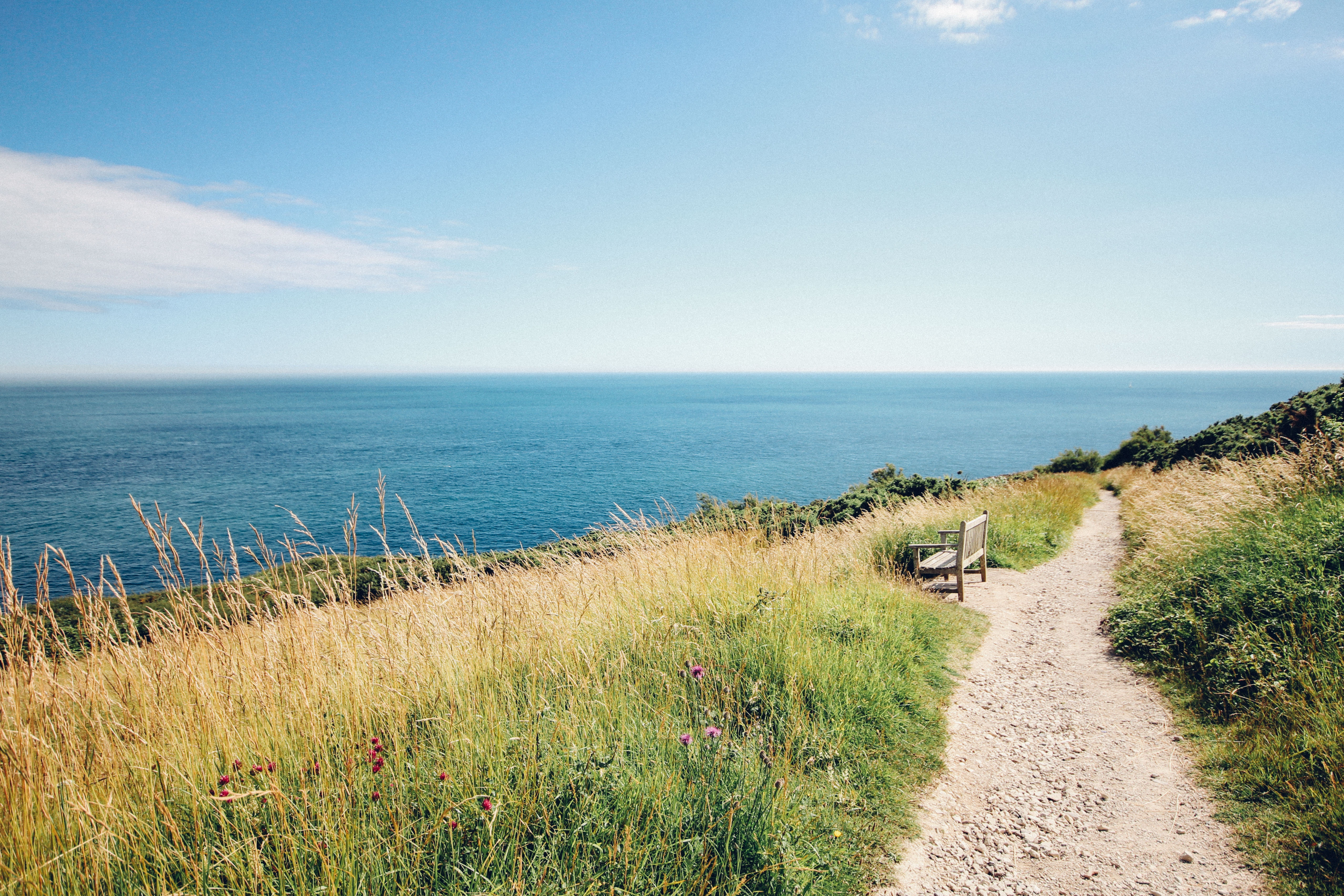 Path on the sea, tha atlas of paths, Photo by Rachel Lees via Unsplash