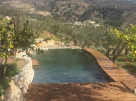 Natural bio-swimming pool, Andalucia, green tourist facilities