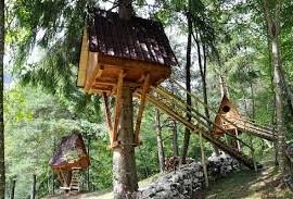 Tree Village in Claut (Friuli), Italy