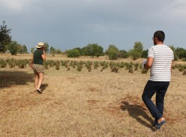 countryside - Mater, a zero impact project in Apulia