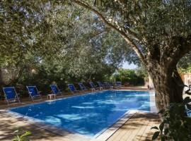 Swimming pool, Villa Andrea, Marina di Camerota