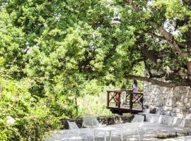 eco-sustainable resort in Cilento park