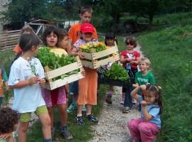 Children doing activities in the biologic garden of La Fonte holidayfarm in Folgaria
