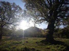 Landscapes near the agriturismo Il Querceto