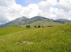 Landscape between the peaks of the Lucanian Apennines
