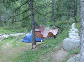 Hammocks and tents between the trees of the forest