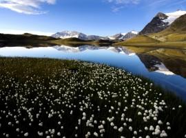 Landscape, Ceresole Reale, via Alpine Pearls