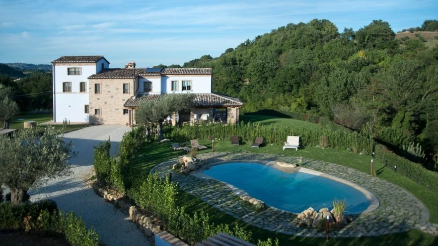 Veg farm in the Marche region