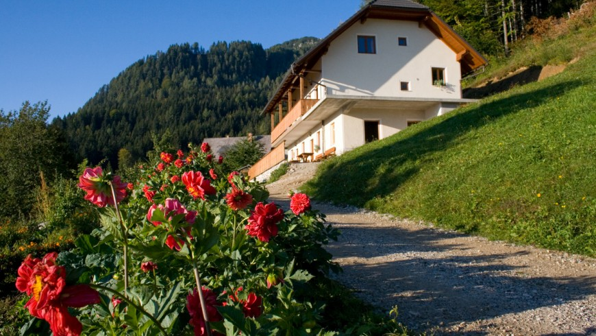 An active holiday in the mountains of Slovenia
