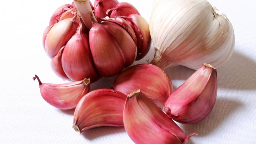 red garlic of Sulmona