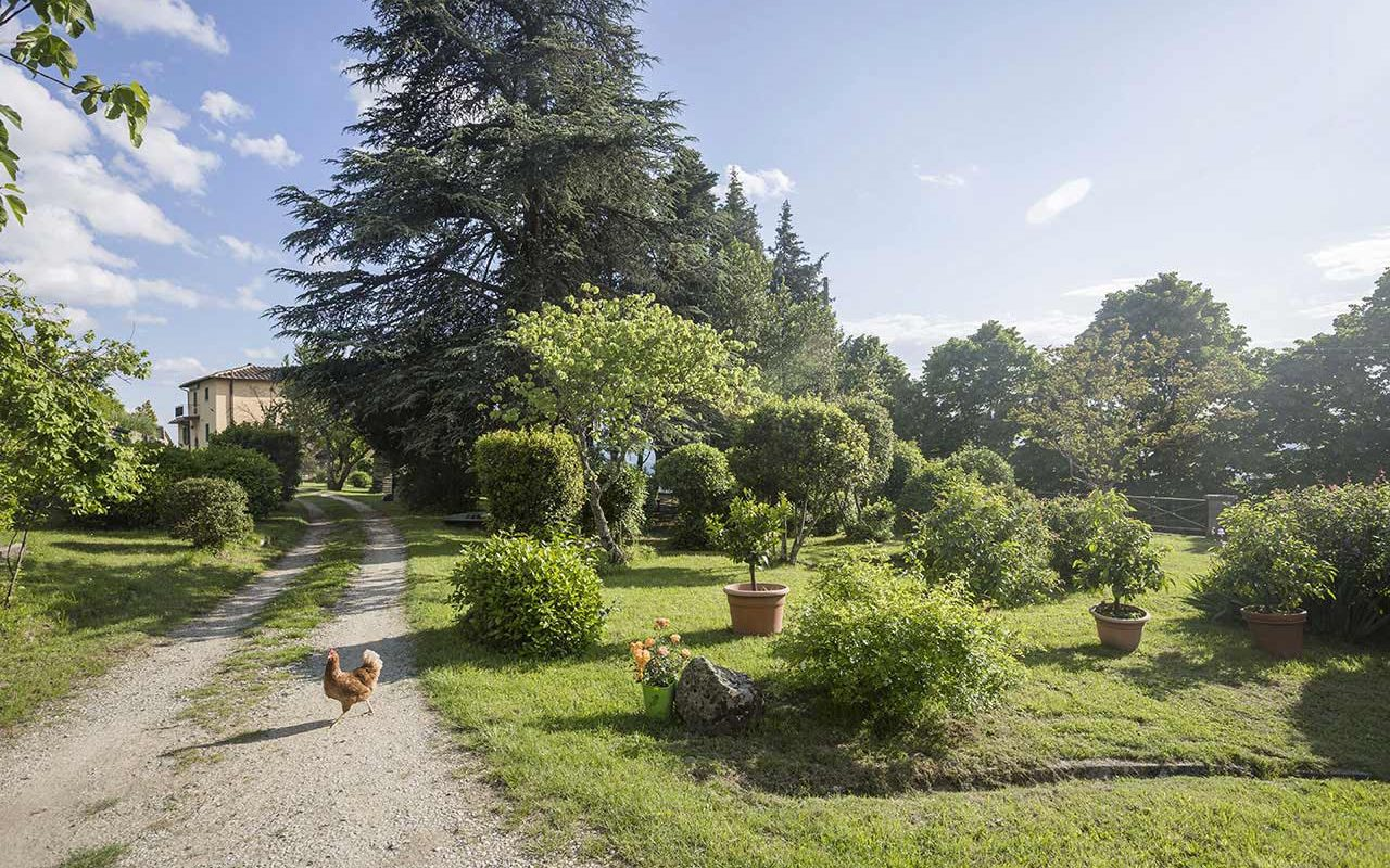 Casa Cares, in Tuscany, is the perfect place for retreats and group vacations