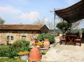 the garden of Ancora del Chianti