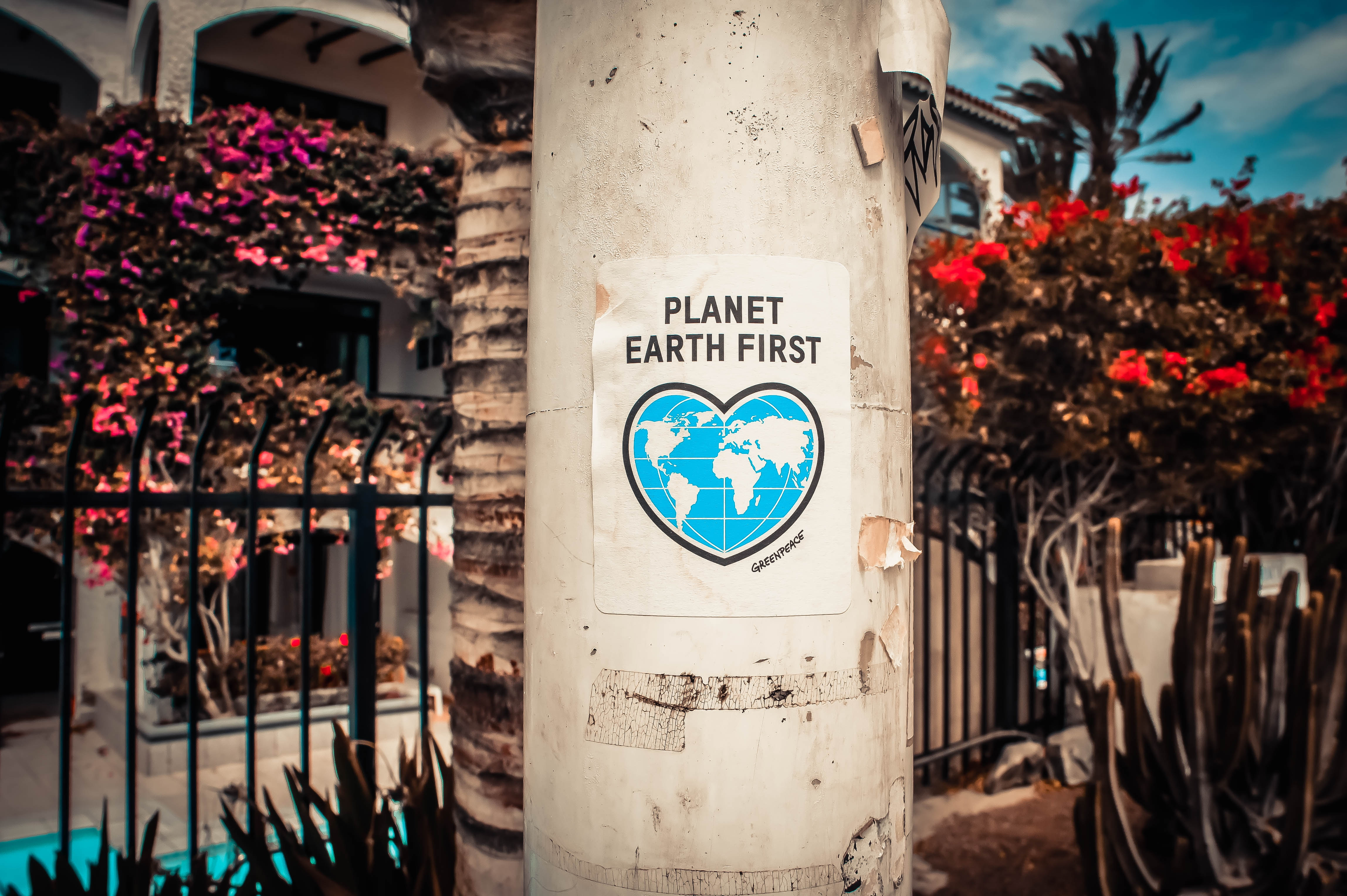 Earth Planet First Resources: We have used a year's worth of Earth's resources in just seven months