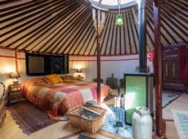 Digital detox at Yurta Soul Shelter