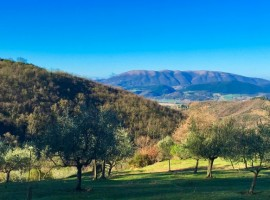 Digital detox at Podere Vallescura Off The Grid