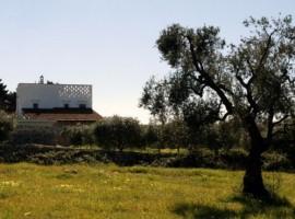 organic farmhouse