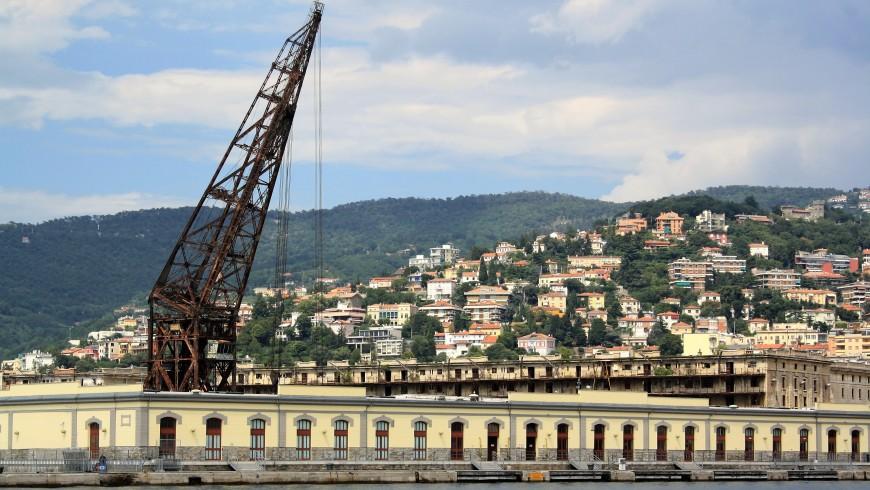 Ursus, Trieste
