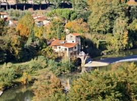 La Martellina, eco-friendly BnB near the Arno river