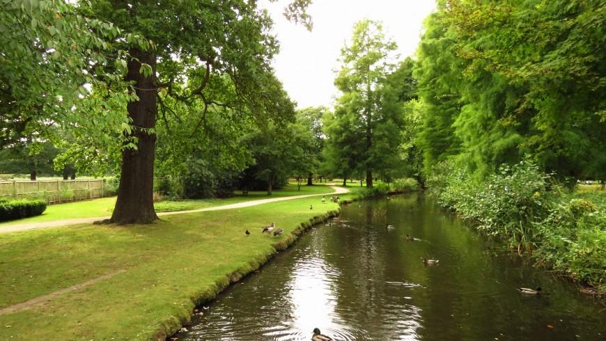 BUshy Park, London