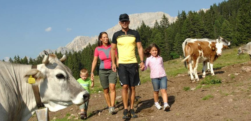 A Family Hotel in the Trentino Dolomites