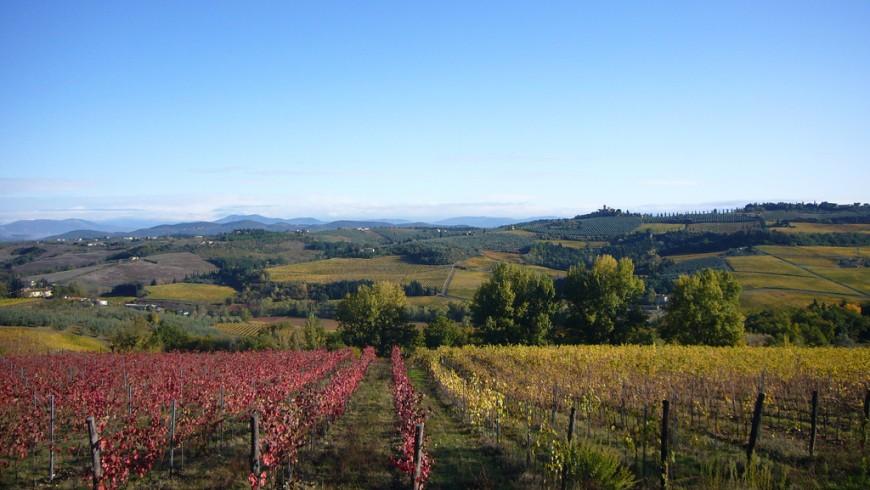 Montespertoli region