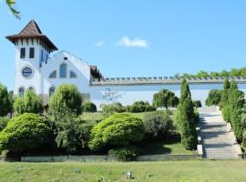 Castle of Purcari Chisinau