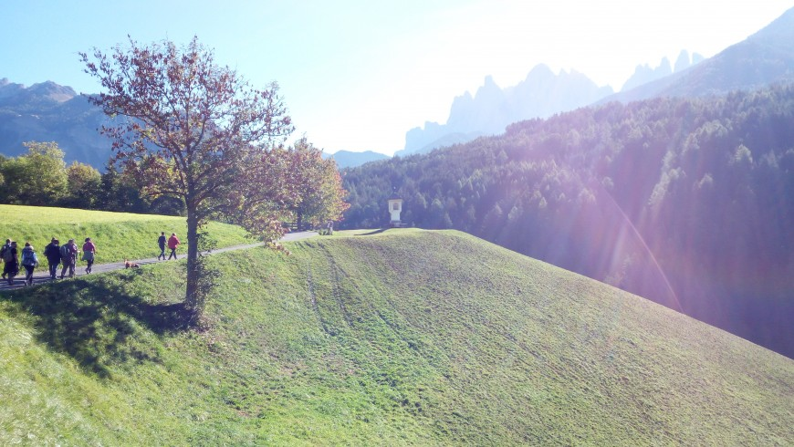 Falling in love with the perfect landscape of Val di Funes