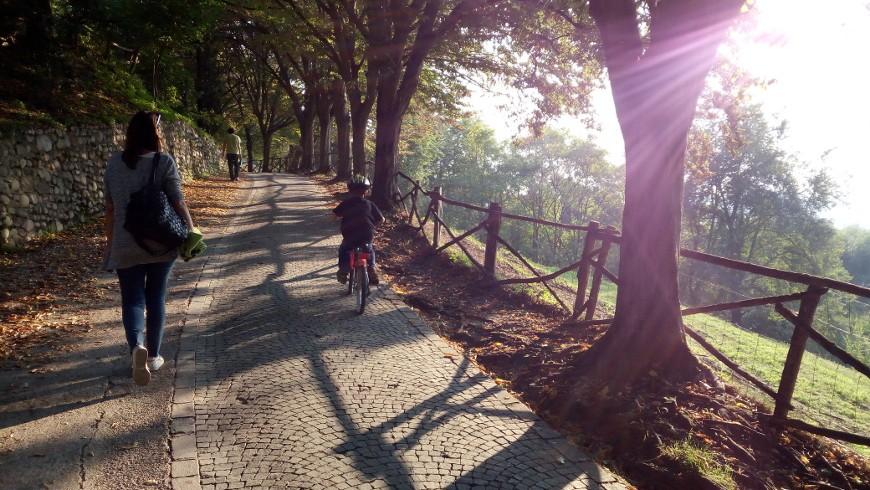 Sigurtà Park, Italy, by bike